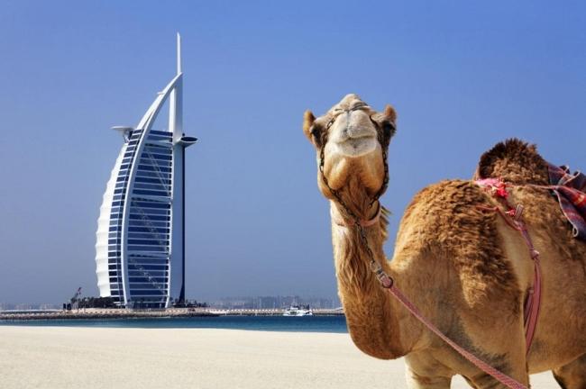 Viajes Low Cost. VIAJES GRUPALES A CHINA Y DUBAI  - Beijing / Hangzhou / Shanghai / Xian / Dubái /  - Buteler en China